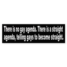 There is no gay agenda, there is a straight agenda