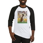 Spring with a Boxer Baseball Jersey