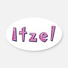 Itzel Pink Giraffe Oval Car Magnet