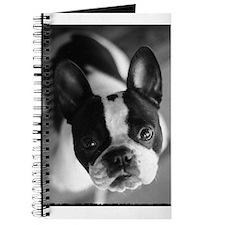 Cute Eyes love Journal