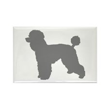 poodle gray 3 Magnets