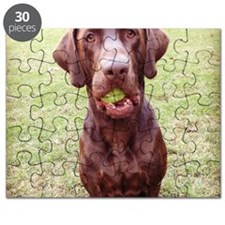 Chocolate Lab  With Ball Puzzle