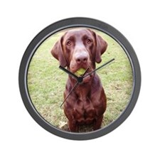 Chocolate Lab  With Ball Wall Clock