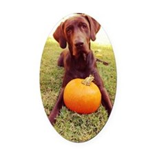 Halloween Chocolate Lab Oval Car Magnet