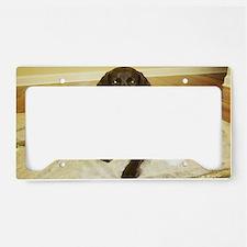 Chocolab Lab Christmas License Plate Holder