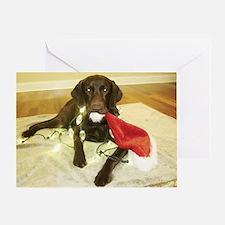 Chocolab Lab Christmas Greeting Card