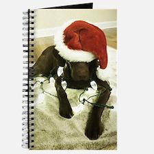 Chrocolate Lab Christmas 3 Journal