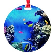 Monterey Bay Aquarium  Ornament