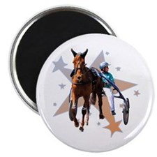 Harness Star Magnet