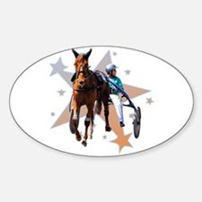 Harness Star Oval Decal
