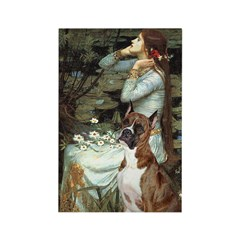 Ophelia & Brindle Boxer Rectangle Magnet (10 pack)