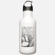 Agave Plant Water Bottle