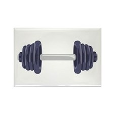 Iron Weights Magnets