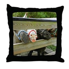from the horse's mouth Throw Pillow