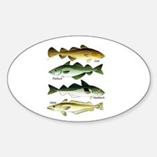 4 Cod fishes Decal