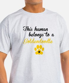 This Human Belongs To A Goldendoodle T-Shirt