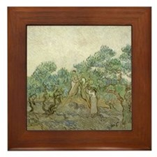 Vincent van Gogh, The Olive Orchard Framed Tile