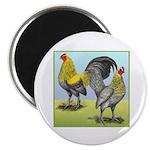 """Lemon Blue OE Pair 2.25"""" Magnet (100 pack)"""