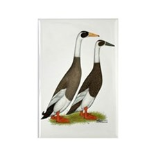 Runner Ducks Emery Penciled Rectangle Magnet