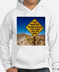 Your whole life flashes Hoodie
