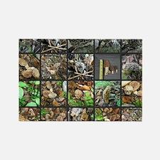 Morels Galore Collage Rectangle Magnet