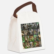 Morels Galore Collage Canvas Lunch Bag