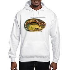 Patch-Nosed Salamander Hoodie