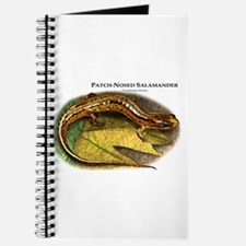 Patch-Nosed Salamander Journal