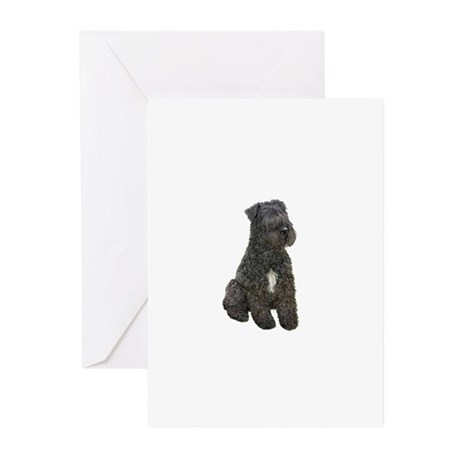 * * * * * Greeting Cards (Pk of 10)