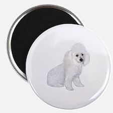 Poodle (W3) Magnet