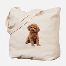 Poodle-(Apricot2) Tote Bag