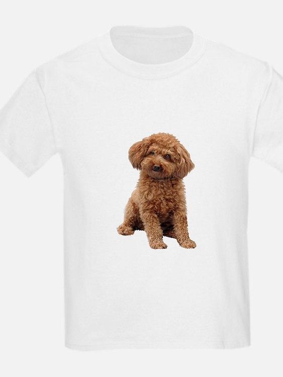Poodle-(Apricot2) T-Shirt