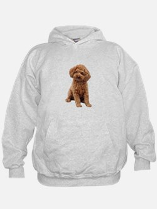 Poodle-(Apricot2) Hoodie