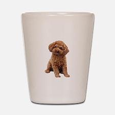 Poodle-(Apricot2) Shot Glass