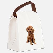 Poodle-(Apricot2) Canvas Lunch Bag