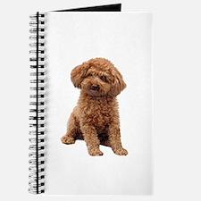 Poodle-(Apricot2) Journal