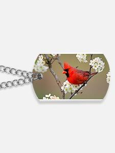 Red Cardinal Photo Dog Tags