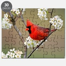 Red Cardinal Photo Puzzle
