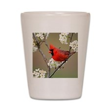 Red Cardinal Photo Shot Glass