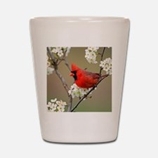 Red Cardinal Photo Shot Glass