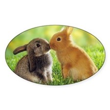 Bunny Decal