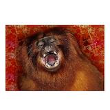 Exotic animals Postcards