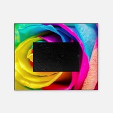 Rainbow Rose Picture Frame