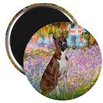 Garden & Boxer Magnet