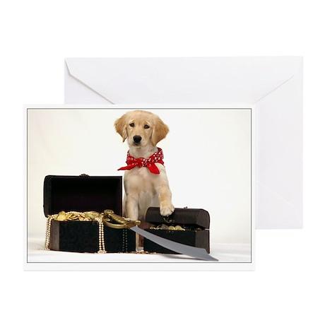 SNAPshotz Golden Puppy Pirate Birthday Photocards