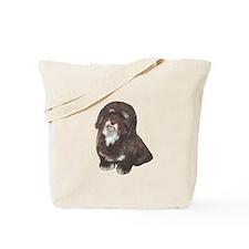 Havanese (brn-blk) Tote Bag