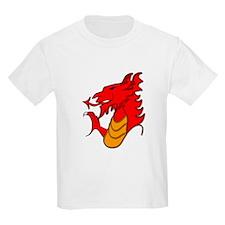 Wales , Welsh dragon T-Shirt