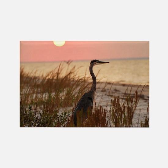 Heron at Sunset Rectangle Magnet