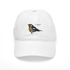 Blackburnian Warbler Baseball Cap