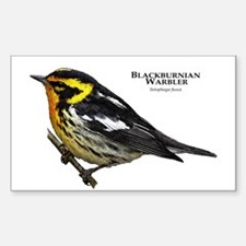 Blackburnian Warbler Decal